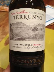 Concha T Toro. Entre Cordilleras, Peumo Vineyard Terrunyo. Carmenere Block 27